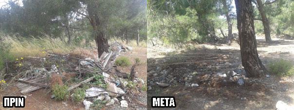 ampeliko-prin-meta-2