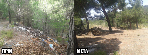ampeliko-prin-meta-3