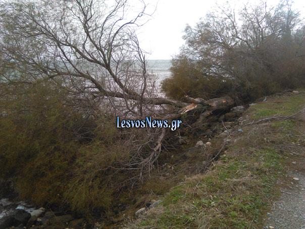 lesvos-katastrofes-4