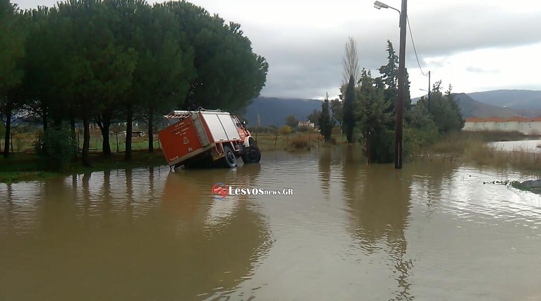 plimires-kalonis-2016-24