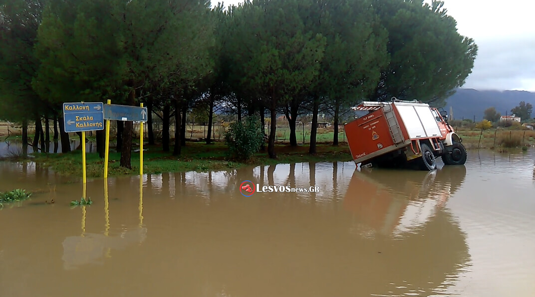 plimires-kalonis-2016-29